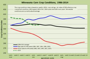 MN Corn Conditions