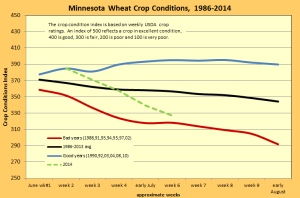 MN wheat conditions